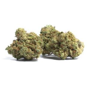Buy Weed Online - mango haze
