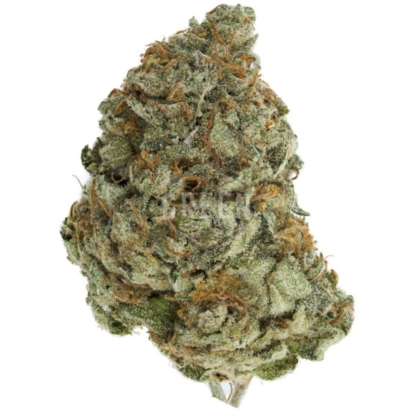 G 13 Indica - Buy Cheap Weed Online